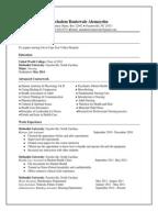 Cv template nursing ace nursing health care resume 2 yelopaper Gallery