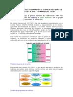 ISO 19011 (2002) Resumen