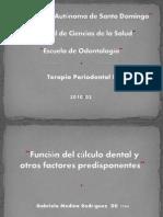 funciondelcalculo-100914151522-phpapp01