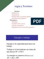 Energia-y-Enzimas