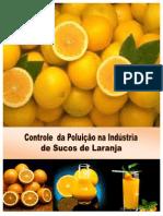CONTROLE DA POLUIÇÃO NA INDÚSTRIA DE SUCOS DE LARANJA_Viçosa 2011