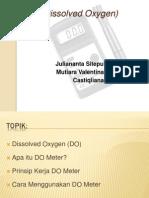 DO (Dissolved Oxygen) Meter