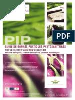 Bonnes Practiques Phytosanitaires Aubergine Fr 0
