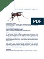 08el Dengue