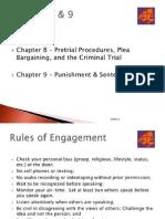 Pretrial Procedures Plea Bargaining and Criminal Trial
