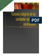 tumores nasales