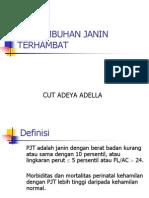 16. PJT