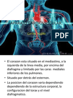 Semiologia Aparato Cardiovascular