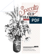 Speciality Cutflowers