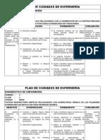 PLAN DE CUIDADOS DE ENFERMERÍA (2)