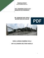 PERFIL EPIDEMIOLÓGICO 13112012 (1)