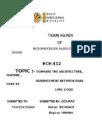 Term Paperterm paper