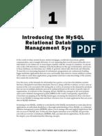 Wrox.beginning.mysql.mar.2005 - 01. Introduction