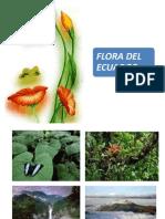 Flora Del Ecuador 2014