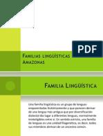 tmp_Familias lingüísticas del Amazonas-769791747.pptx