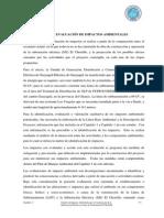 Estudio de Impacto Ambiental - Subestación Chorrillo - Capitulo 4