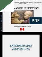 cadenasdeinfeccin-120411220855-phpapp01
