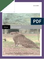 verslag jachtluipaard