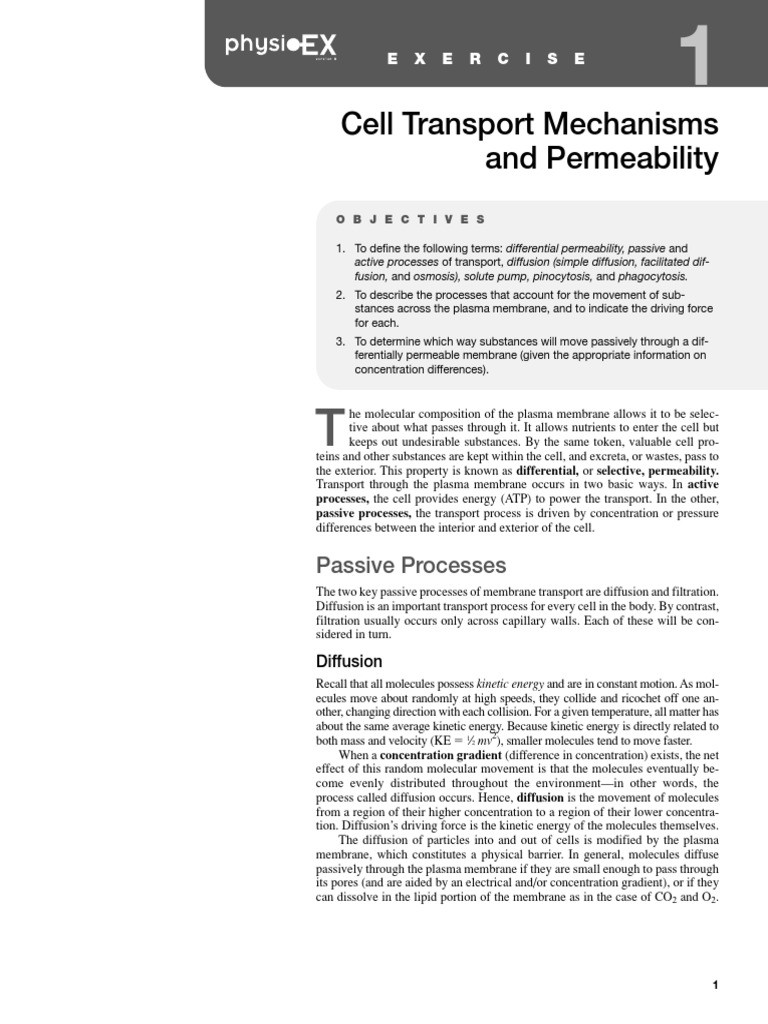 Lab notebook cell transport mechanisms and permeability Custom paper ...