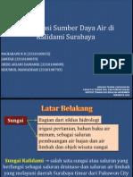 Analisa Qual2KW Sungai Kalidami Surabaya(Presentasi)