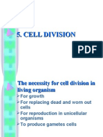 5.1 Cell Division