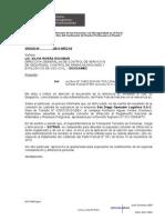 oficio a DICSCAMEC.doc