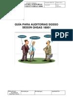 14 Guia Auditoria OHSAS.pdf
