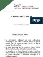 Formacion Reticular y Sistema Limbico