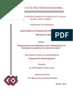 PNL_tesinaq
