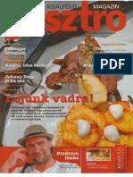 Kisalföld Gasztro magazin 2013. november 13