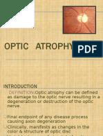 seminar on Optic Atrophy