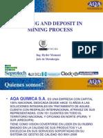 Incrustaciones y Depositos