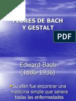 Flores de Bach (1)