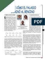 Dialnet-SobreComoElPaladioDominoAlBencino-1123699