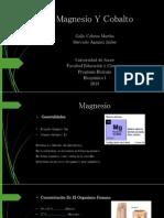 Magnesio Y Cobalto Exposicion