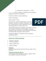 Cânfora - Cinnamomun comphora (L.) J. Presl. - Ficha Completa Ilustrada
