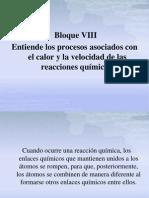Bloque VIII