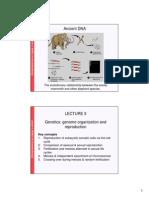 Genetics Lect 3 2011 colour 2 slides per page.pdf