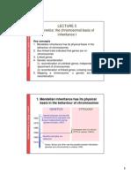 Genetics Lect 5 2011 Colour 2 Slides Per Page
