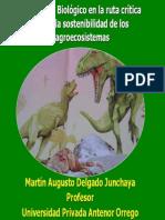 6 Delgado Control Biológico