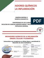 Exposicion de Patologia Mediadores Inflamacion