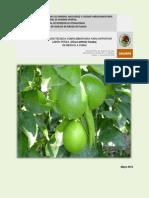 Información Técnica_Limón persa