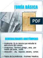 Anatomia+Basica