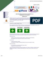 Tropa Scout.pdf
