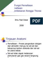 Struktur Dan Fungsi Pernafasan