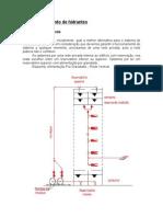 29034416 Dimensionamento Basico de Hidrantes
