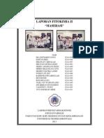 Laporan Fitokimia II