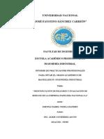 Informe de Practicas Pre-Profesionales Listo (2)