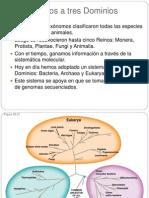 Procariotas Lab (2)