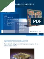 Microprocesadores-fernandez Ayme, Elice Emilio